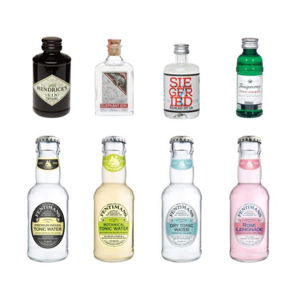 Gin Tasting online akufen