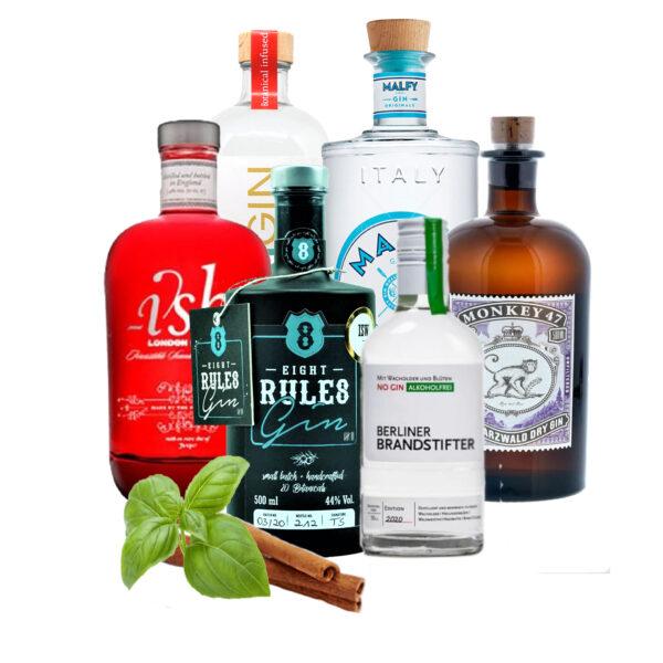 Gin starter Kit online kaufen