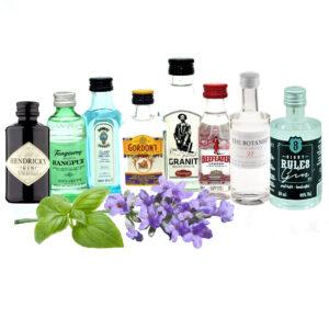 Gin Minis online kaufen