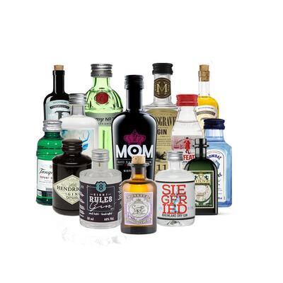"""Gin Tasting """"Miniaturen""""nach Auswahl"""
