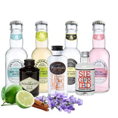 "Fentimans ""Tasting"" GIN Mix"